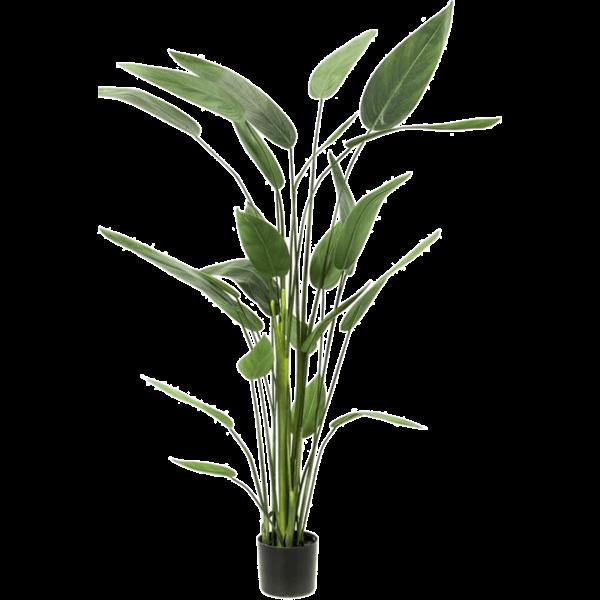 Heliconia XL - kunstplant