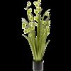 Grass Pompom - kunstplant