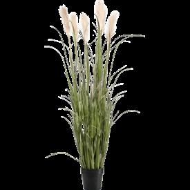 Fleur.nl - Grass Pampas pluimen - kunstplant