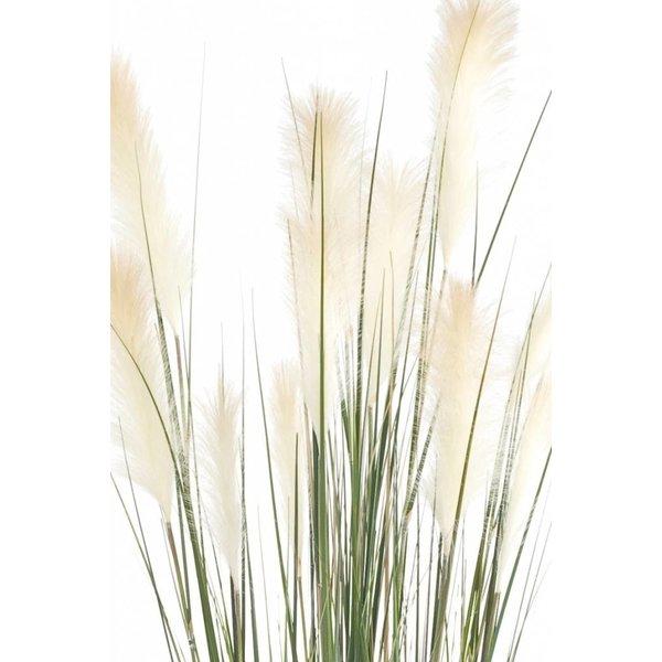 Grass Pampas pluimen - kunstplant
