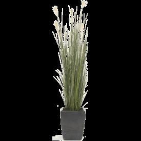 Fleur.nl - Grass Pampas - kunstplant