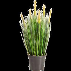 Fleur.nl - Grass Horsetail - kunstplant
