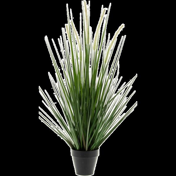 Grass Alopecurus - kunstplant