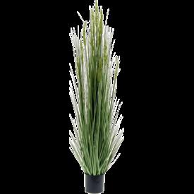 Fleur.nl - Grain Grass - kunstplant