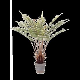 Fleur.nl - Fern Dicksonia - kunstplant