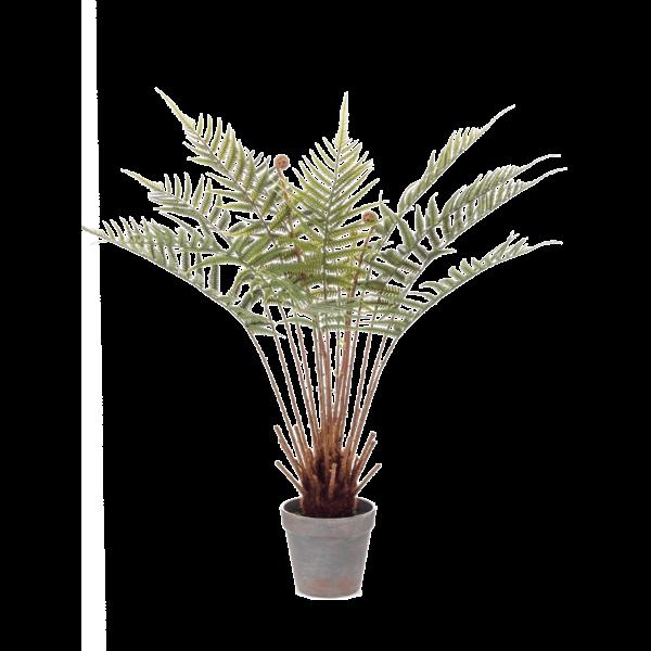 Fern Dicksonia - kunstplant