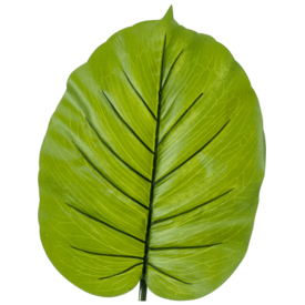 Fleur.nl - Alocasia blad - kunstplant