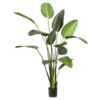 Strelitzia XXXXL - kunstplant