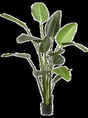 Grote kunstplanten