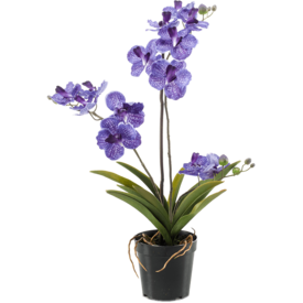 Fleur.nl - Vanda Purple  - kunstplant