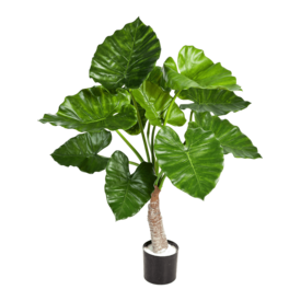 Fleur.nl - Alocasia Calidora met stammen - kunstplant