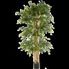Bamboe Giant XXL- kunstplant