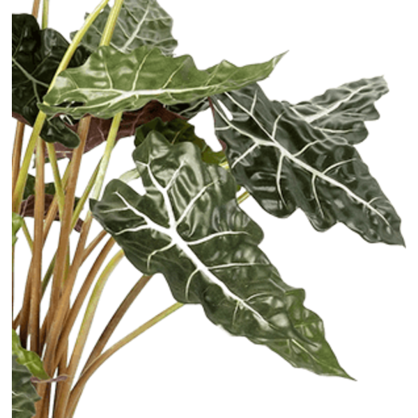 Alocasia Polly - kunstplant