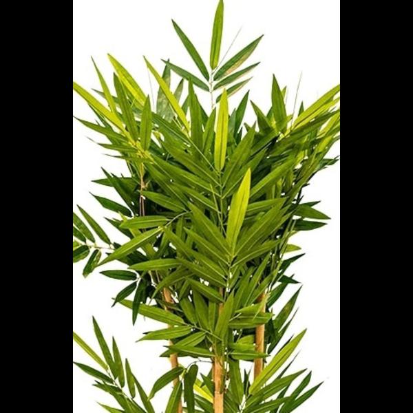 Bamboo Small - kunstplant