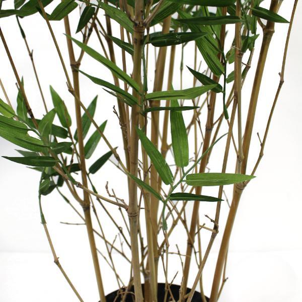 Bamboe Oriental - kunstplant