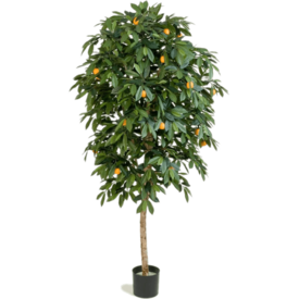 Fleur.nl - Citrus Mandarine - kunstplant