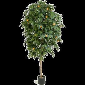 Fleur.nl - Citrus Mandarine Large - kunstplant