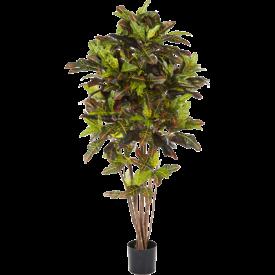 Fleur.nl - Croton Exellent - kunstplant