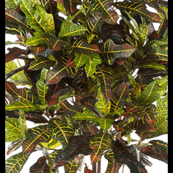 Croton Exellent Large - kunstplant