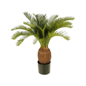 Fleur.nl - Cycas - kunstplant