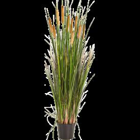Fleur.nl - Grass Cattail - kunstplant