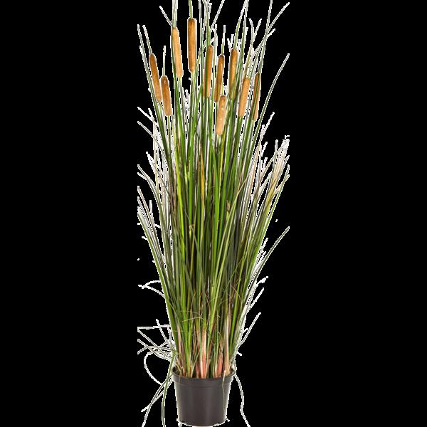 Grass Cattail - kunstplant