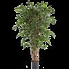 Ficus Liana Exotica - kunstplant