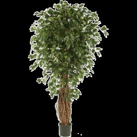 Fleur.nl - Ficus Liana Exotica Bush Small - kunstplant