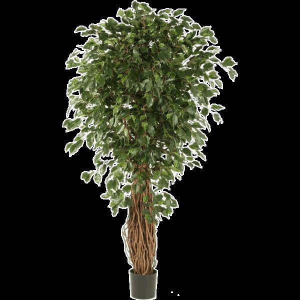Ficus Liana Exotica Bush - kunstplant