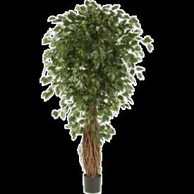 Fleur.nl - Ficus Liana Exotica Bush XL - kunstplant