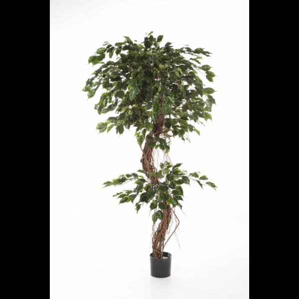 Ficus Corkscrew Exotica - kunstplant