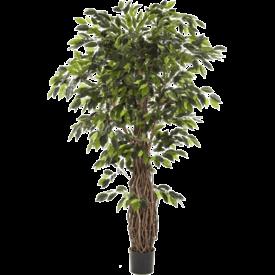 Fleur.nl - Ficus Liana XL - kunstplant