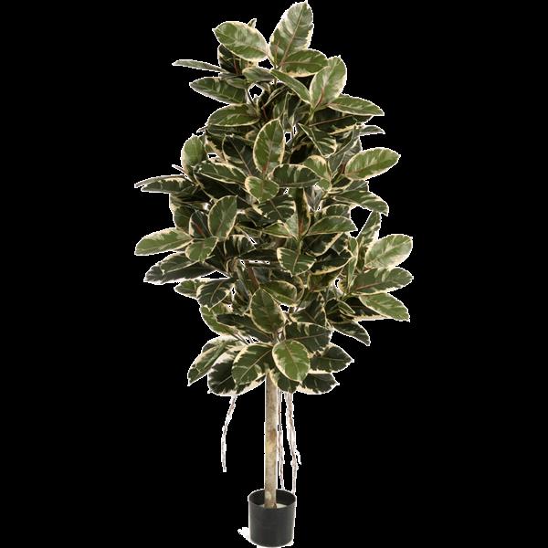 Ficus Elastica variegata - kunstplant