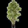 Japanese Bamboo Large - kunstplant