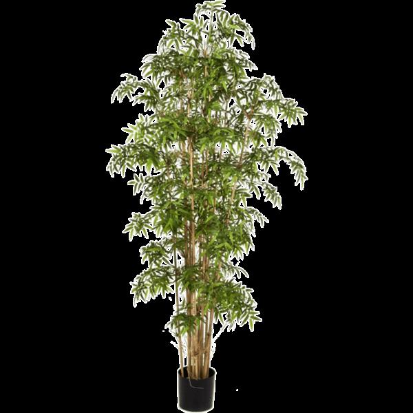 New Japanese Bamboo - kunstplant