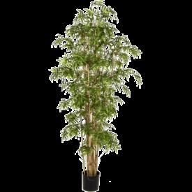 Fleur.nl - New Japanese Bamboo Large - kunstplant