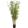 Oriental Bamboo Tree zuil - kunstplant