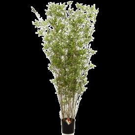 Fleur.nl - Oriental Bamboo Tree zuil - kunstplant