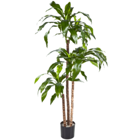 Fleur.nl - Dracaena Fragrans Steud Green - kunstplant
