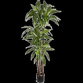 Fleur.nl - Dracaena Fragrans Green/White - kunstplant