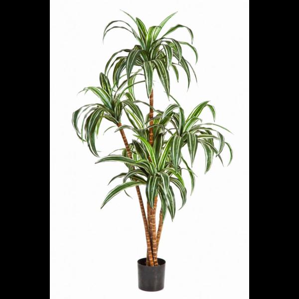 Dracaena - kunstplant