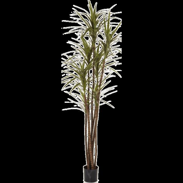 Dracaena Magenta Small - kunstplant