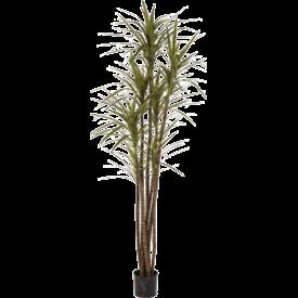 Fleur.nl - Dracaena Magenta - kunstplant