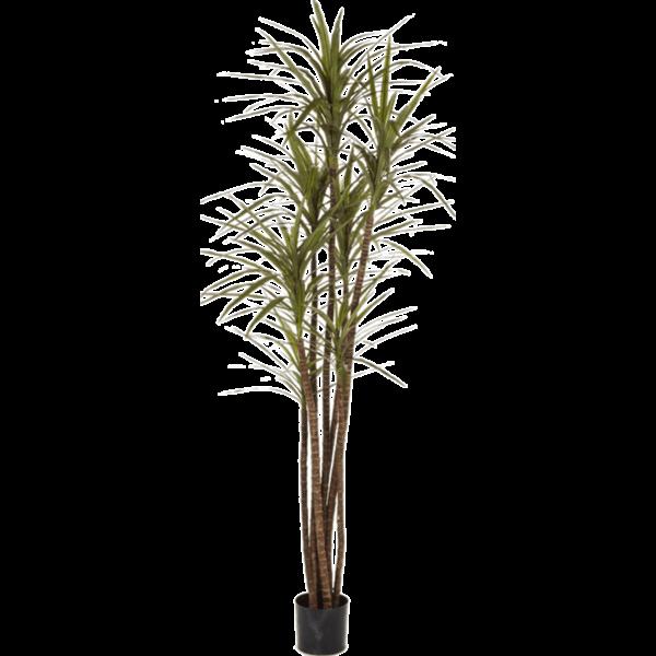 Dracaena Magenta - kunstplant