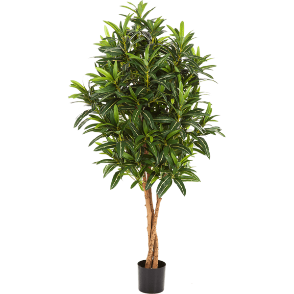 Croton Goldfinger - kunstplant