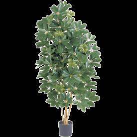 Fleur.nl - Natural Schefflera - kunstplant