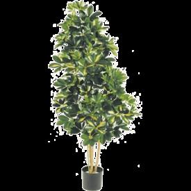 Fleur.nl - Natural Schefflera var. XL - kunstplant