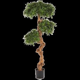 Fleur.nl - Podocarpus - kunstplant