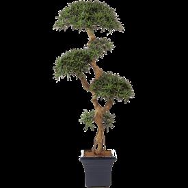 Fleur.nl - Podocarpus Vertakt - kunstplant