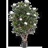 Camelia Japonica White - kunstplant